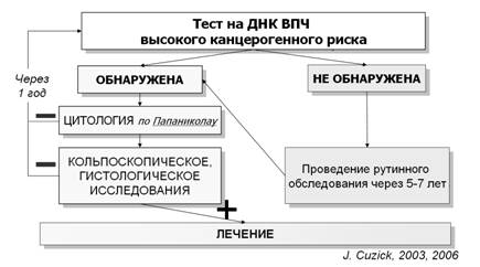 Днк hpv